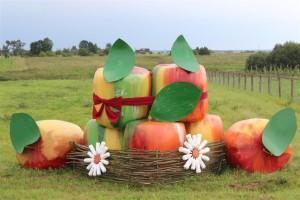 Падведзены вынікі раённага конкурсу на лепшае афармленне кампазіцыі з рулонаў саломы