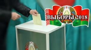 В местные Советы в Беларуси избраны 18 110 депутатов — предварительные данные ЦИК
