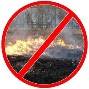 Не допускайте выжигания сухой травы!