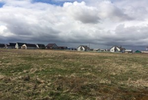 Предлагаются для продажи земельные участки в Радюковском сельсовете