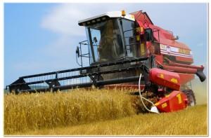 О предупреждении производственного травматизма  при проведении работ по уборке зерновых культур в 2019 году