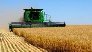 Об обеспечении требований безопасности труда при проведении работ по уборке продукции растениеводства
