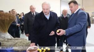 А.Лукашэнка аб перадвыбарным шуме: трэба справай займацца, а не расхістваць краіну