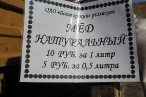 IMG_1597 (Копировать)
