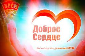 В Витебске подготовят и обучат волонтеров движения «Доброе Сердце» для помощи маломобильным избирателям
