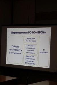 IMG_9794 (Копировать)