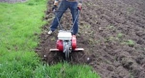 Обрабатываешь огороды – заплати налог